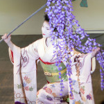 dancing maiko with wisteria