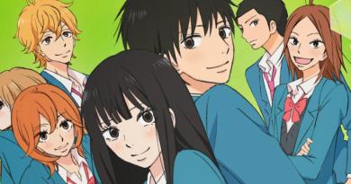 Kimi Ni Todoke animes