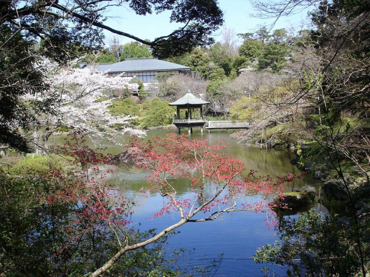jardines japoneses Parque de Narita
